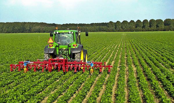 Agricoltura, anche in Umbria i sindacati sospendono lo sciopero
