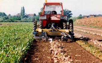 Nuove risorse per le imprese agricole e agroalimentari della media valle del Tevere. Incontri del Gal sul Bando per l'attuazione della Misura 411 del Psr