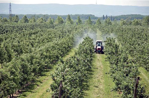 Pesticidi, i nuovi incubi