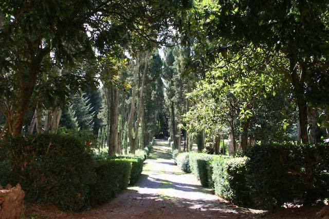 Denunciato per tentata violenza sessuale nel Parco di Villa Paolina