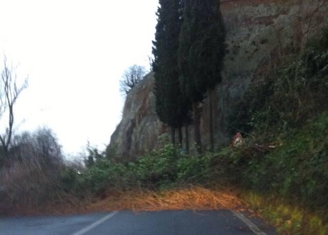 Cade un albero lungo la Strada della Stazione, traffico interrotto