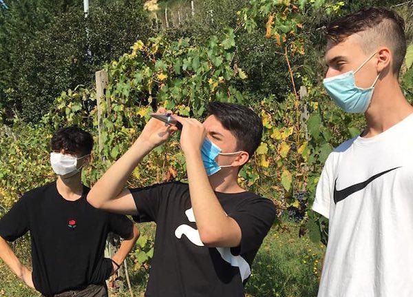 Festival dello Sviluppo Sostenibile, partecipa anche l'Agrario di Fabro con i laboratori didattici