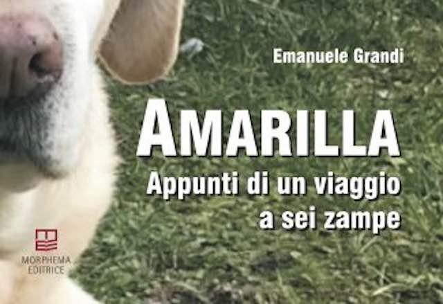 """Gabriella Carlucci presenta il libro """"Amarilla, appunti di un viaggio a sei zampe"""""""