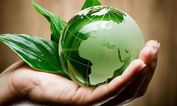 """Questione ambientale e sviluppo economico. Cisl: """"Siamo tutti chiamati a fare la nostra parte"""""""