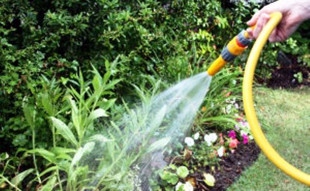 Scatta l'ordinanza del sindaco contro lo spreco dell'acqua