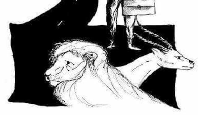 """Si presenta il libro """"L'Antilope e il Leone. Una vita da allergico"""""""