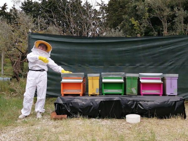 Alla Pro Ponte un settore curerà l'apicoltura