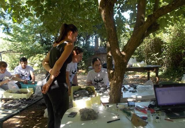 Necropoli di Crocefisso del Tufo, giovani leve per la campagna di scavo 2017