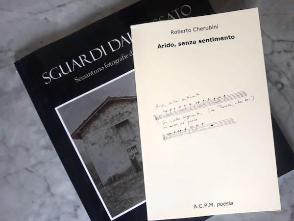 """""""Arido, senza sentimento"""": lo spartito dell'isolamento di Roberto Cherubini"""
