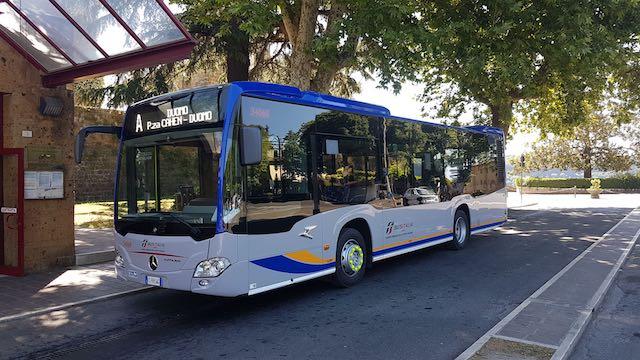 """""""Il nuovo autobus provoca insopportabili vibrazioni in Via Postierla"""""""