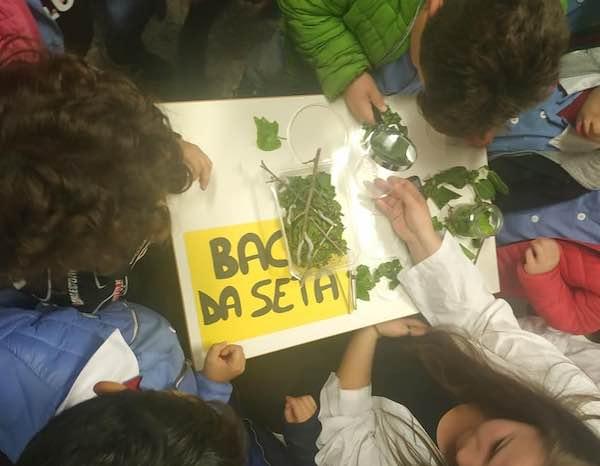 Gli allievi dell'Agrario protagonisti al Festival dello Sviluppo Sostenibile