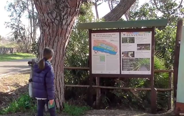 Nuovo video di Francesco Barberini all'Oasi WWF del Lago di Burano