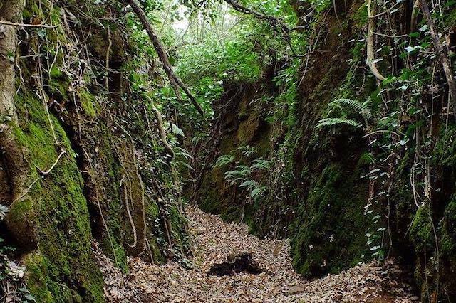 Lungo la Via Cava di Barano con il Gruppo Archeologico Velzna