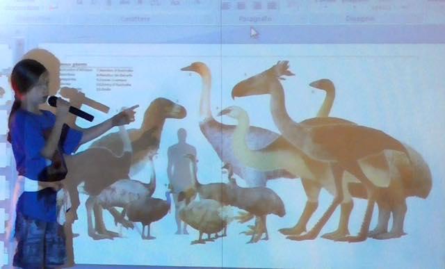 Francesco Barberini, l'aspirante ornitologo diventa ambasciatore del WWF