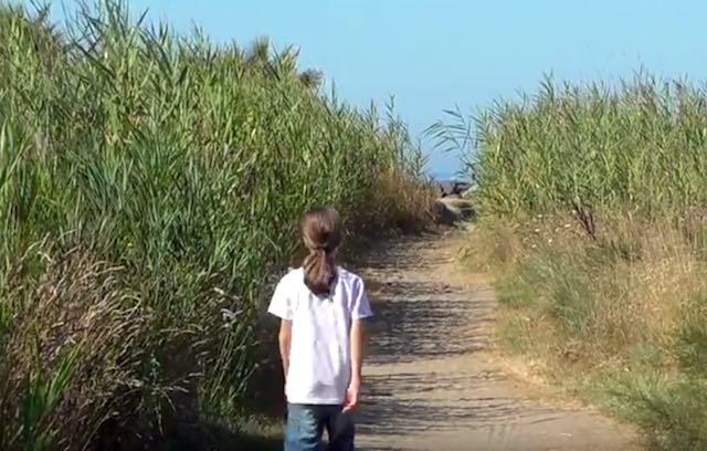 Nuovo video per Francesco Barberini. L'aspirante ornitologo al Monumento Naturale di Torre Flavia