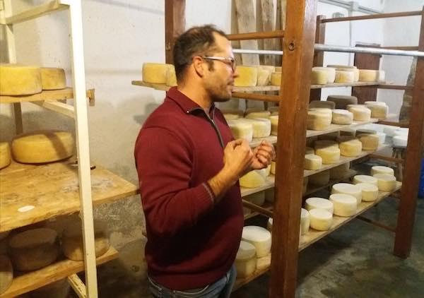 """""""Camminate del Gusto"""" fa tappa all'Azienda Agricola Basili"""