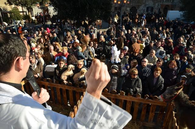 Colazione del buttero e benedizione degli animali per Sant'Antonio Abate