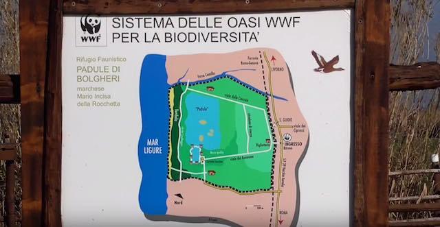 Nuovo video per il WWF di Francesco Barberini, classe 2007, aspirante ornitologo in Toscana