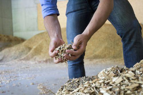 """Biomasse, Agricola Macchia Alta Srl: """"La verità è un'altra"""""""