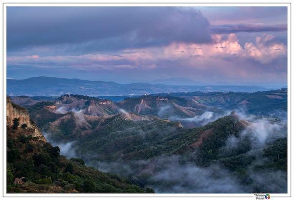 """Concorso fotografico """"Biodiversità della Valle dei Calanchi. Il Paradiso delle Api"""""""