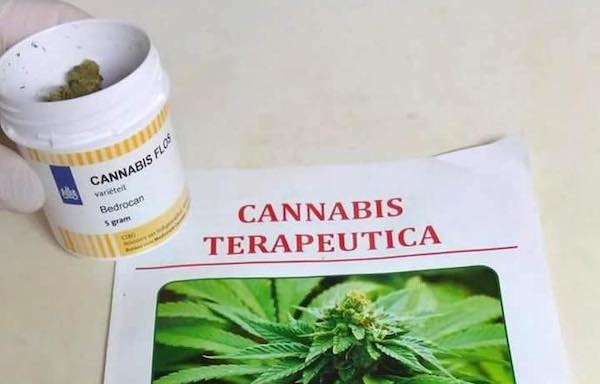 Cannabis terapeutica, il Ministero conferma l'aumento di produzione ad uso medico