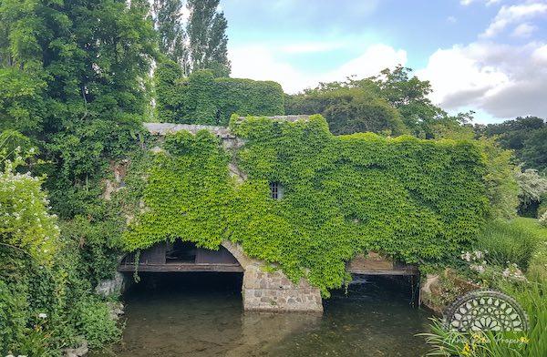 """""""Ritorno alla Bellezza"""". Visita al Giardino della Cannara e al Borgo dei Pescatori"""