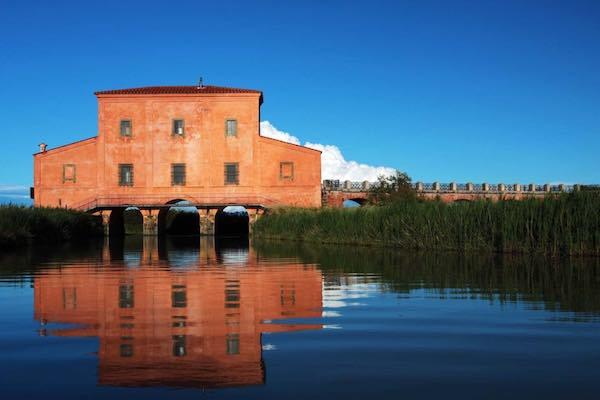 """""""Presepe in Vasca"""", mostre ed eventi nei Musei di Maremma per il Ponte dell'Immacolata"""