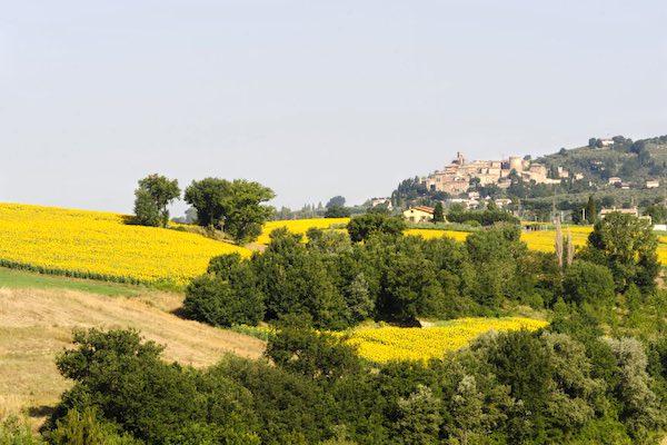 """Il tour dell'arena estiva di """"Oltre il Visibile"""" fa tappa a Baschi"""