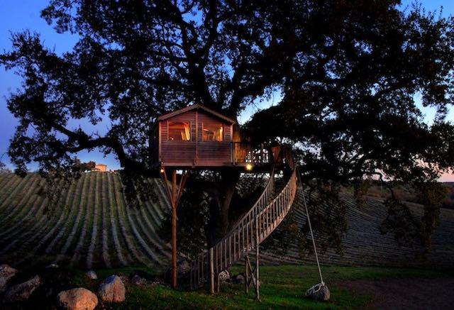 """""""La Casa sull'Albero"""" tra le colline fiorite. Percorso sensoriale, al tramonto e al mattino"""