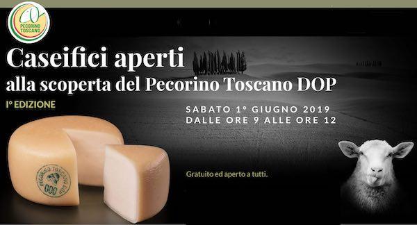 """Debutta """"Caseifici Aperti"""". In assaggio, il Pecorino Toscano DOP"""