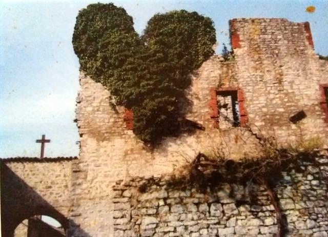 """Piante insolite ed escursioni affascinanti a Castel di Fiori per la nona edizione di """"ArcheFlora"""""""