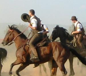 """L'associazione """"Cavalieri del Torrione di Porano"""" impegnata nella diffusione della cultura del cavallo. Soddisfazione per l'apprezzamento a """"Pomi & Galline""""."""