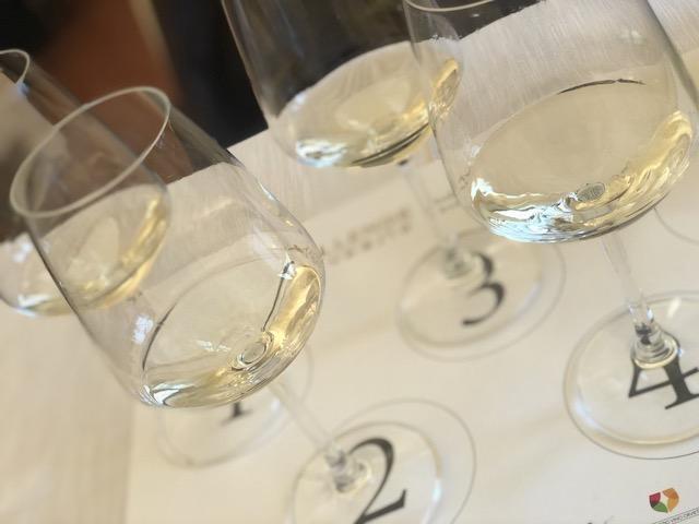 Il Vino di Orvieto conquista la giuria internazionale del Challenge Euposia