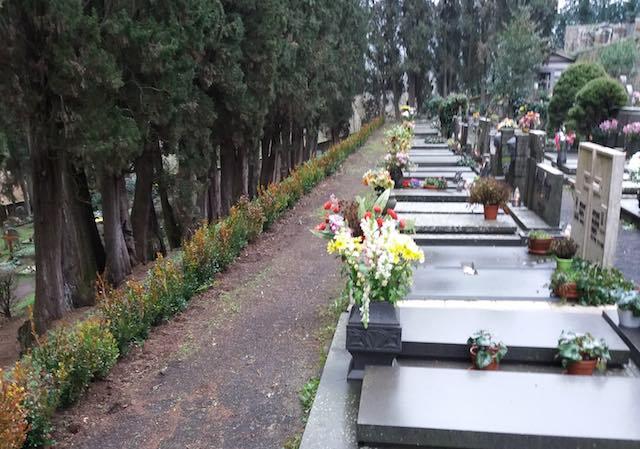 Erbe infestanti nei cimiteri comunali, via al calendario di trattamenti essiccanti
