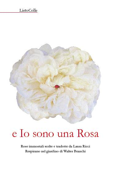 """""""e Io sono una Rosa"""". Rose immortali scelte e tradotte da Laura Ricci. Respirano nel giardino di Walter Branchi"""