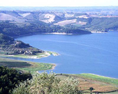 """Approvata la disciplinare DOC per i vini bianchi """"Lago di Corbara"""". Nasce il """"Vermentino"""""""