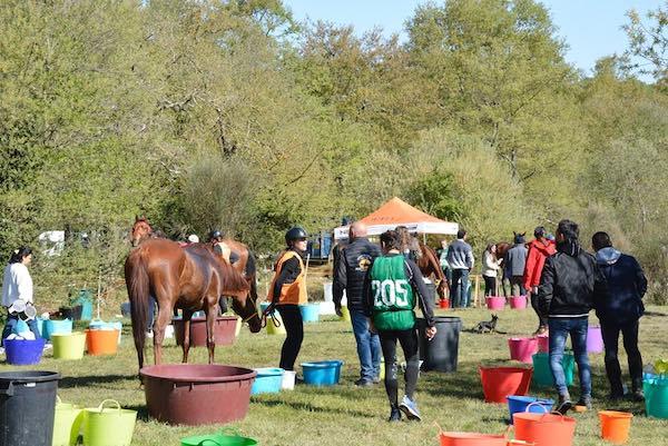 Cavalli, amazzoni e cavalieri per un weekend nel segno dell'endurance