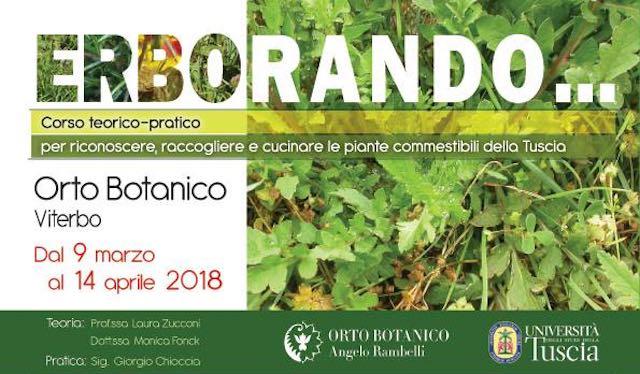 """""""Erborando"""" all'Orto Botanico Rambelli. Corso per riconoscere le piante commestibili"""