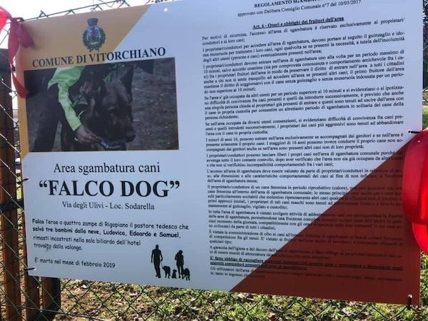 Proseguono le iniziative a favore degli animali. Attiva la campagna di adozioni dei cani