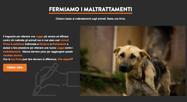 """Cane trascinato con l'auto e ucciso, denunciato un uomo. Lav: """"Necessarie pene più severe"""""""