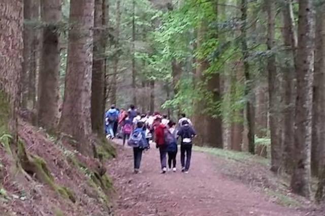 """Progetto """"Viaggio nella natura"""". I bambini diventano ambasciatori dell'ambiente"""