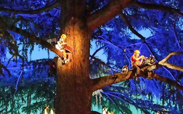 Musica tra i rami del cedro secolare, Paolo Fresu suona per ascoltare la natura