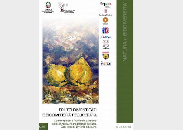 Frutti dimenticati, on line la nuova pubblicazione di Ispra in collaborazione con 3A-PTA