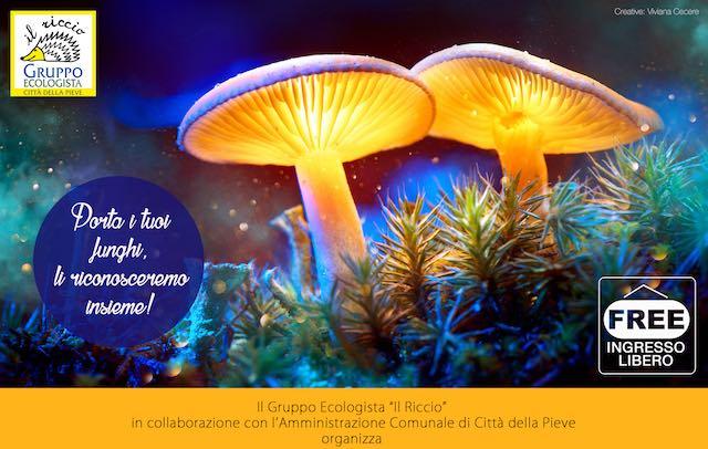 """Mostra e convegno su """"I funghi: tradizioni, magia, scienza, storia e leggende"""""""