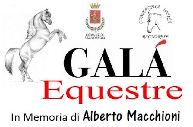 La magia di un Galà Equestre, con Bartolo Messina come protagonista