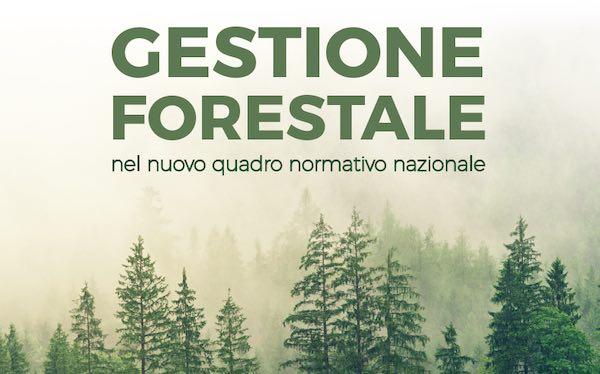 Gestione Forestale nel nuovo quadro normativo nazionale