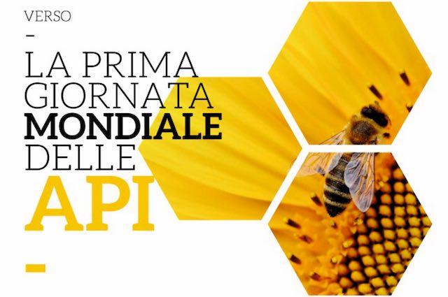 """Conferenza internazionale """"Verso la prima Giornata Mondiale delle Api (World BEE Day)"""""""