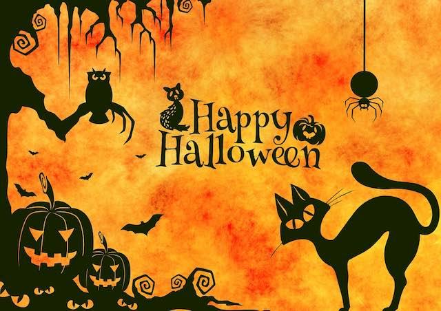 Per Halloween laboratori in inglese e giro del centro storico in costume