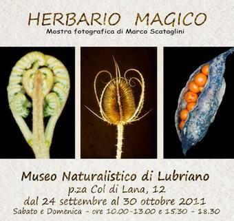 Dal 24 settembre al 30 ottobre al Museo Naturalistico di Lubriano Mostra Fotografica di Marco Scataglini