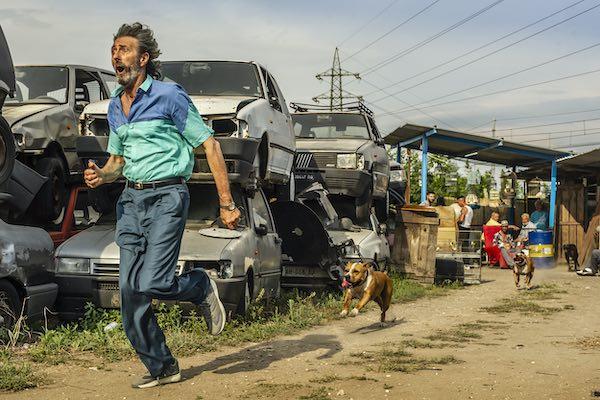 """Carlo Luglio presenta """"Il Ladro di Cardellini"""" e chiude """"Cinema sotto le Stelle"""""""